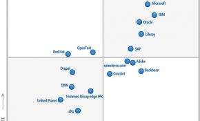 Gartner Horizontal Portals 2013